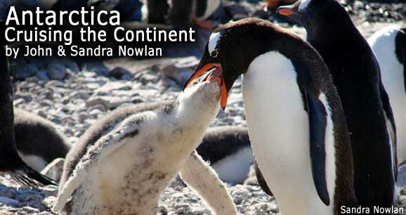 Antarctica: Cruising the Continent