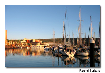 The CostaBaja Marina is the starting point for Cortez Cruises.