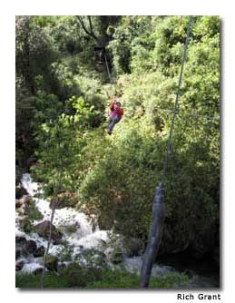 Riding a zipline above the trees in Parque Nacional Vicente Pérez Rosales is an exhilarating experience.