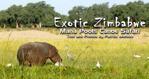 Exotic Zimbabwe: Mana Pools National Park Canoe Safari