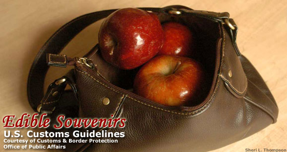 Edible Souvenirs: U.S. Customs Guidelines