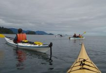 Kayaking in the Queen Charlotte Islands. Flickr/Anne