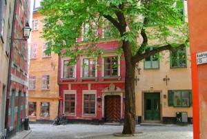 Sweet Summer in Stockholm