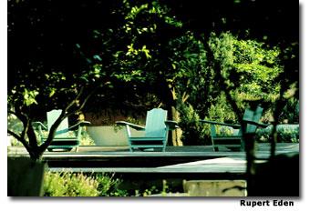 Tropical garden at Pálacio Belmonte.