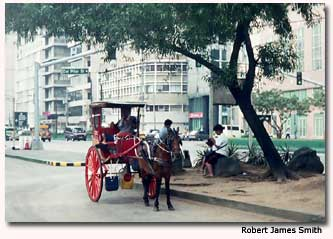 Popular with young and old, Manila's Rizal Park is an oasis in the center of an urban jungle.