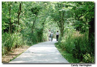 The wide and accessible Bird Trail at Point Pelee features several viewing stations to observe the spring migration.