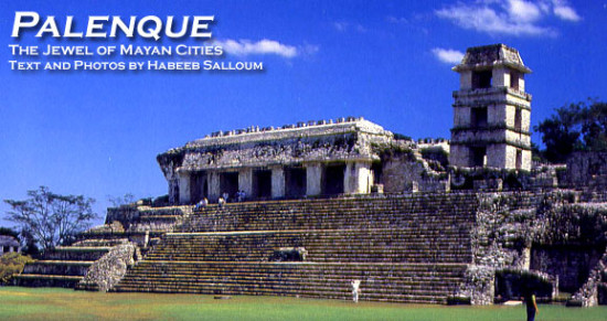 Palenque's El Palacio was hidden from the world.