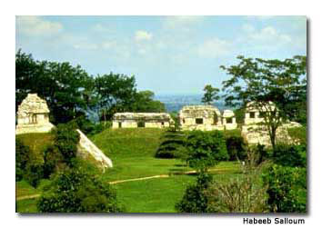 Palenque was hidden until 1831.