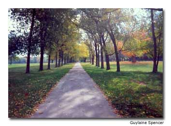 Parallel to the Niagara River is a paved bike path, an alternative to the scenic road.