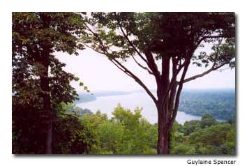 The spectacular view of the Niagara River from Queenston Heights.