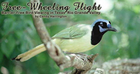 Bird watchers will rejoice at the bird viewing opportunities.