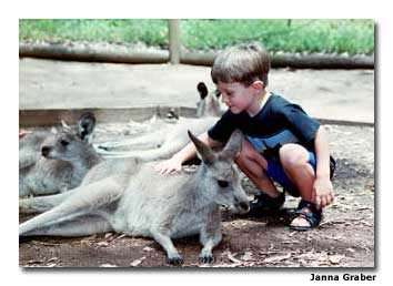 Sydney lets visitors get up close with animals.