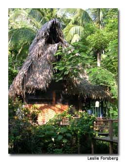 The thatched-roof accommodations allow for a feeling of a primitive experience.