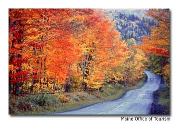 Autumn in southwest Maine brings spectacular fall colors.