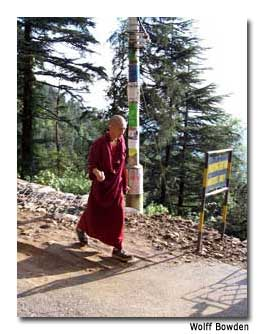 A monk strides down the mountainside.