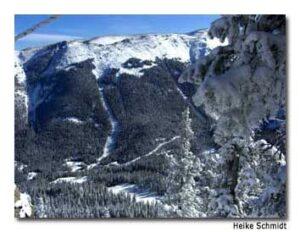 Black Diamond: Taos Ski Valley