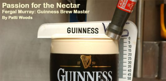 Fergal Murray: Guinness Brew Master