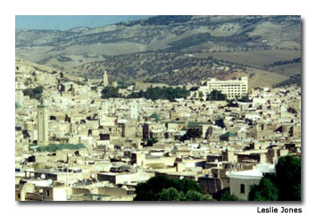 Fez stretches out for miles in all directions in a complex maze of residences, mosques, tanneries, food booths and shops.