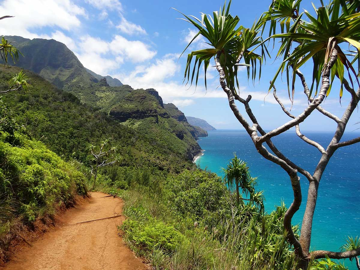 Top Things to do With The Family in Kauai, Hawaii