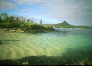 Santa Fe Island Galapagos