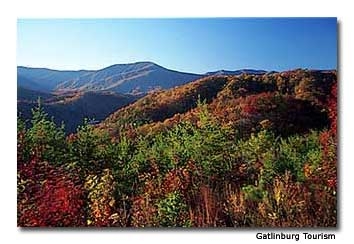 Fall colors cover the Great Smoky Mountains.