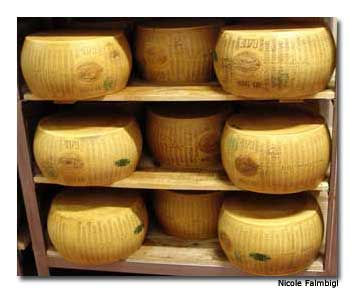 Authentic Parmesan cheese is produced in Parma. Only specific cows, kept in certain areas and fed a specific type of grass, produce the type of milk that gives Parmesan cheese its unforgettable taste.