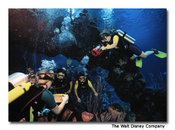 Scuba dive at Epcot