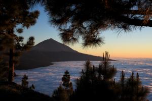 Tanerife, Canary Islands