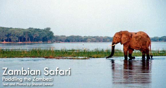 leadzambiazambezi