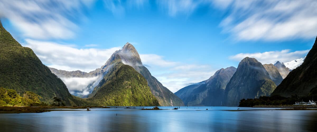 New Zealand nature.