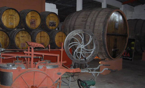 The wine barrels at Irurtia.