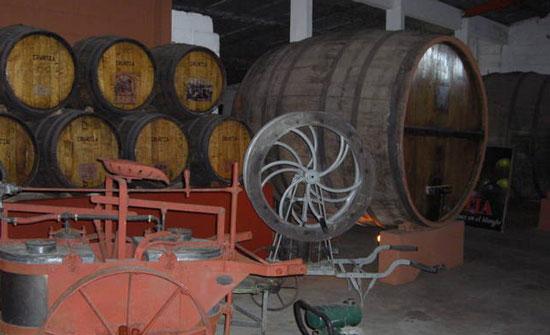 The wine barrels at Irurtia.