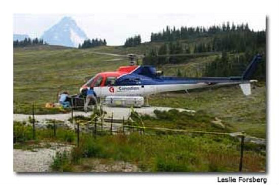 The helicopter transport provides guests with an exhilarating experience.