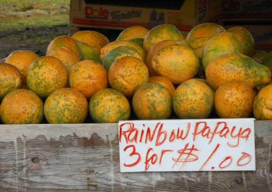 Hilo Farmer's Market. Photo by Leslie Jones.