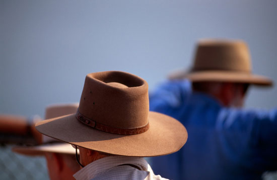 "An inside look at a ""ringer's"" life in the remote grasslands of the Australian Outback."