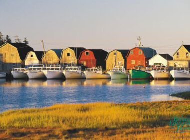 Boats on Prince Edward Island