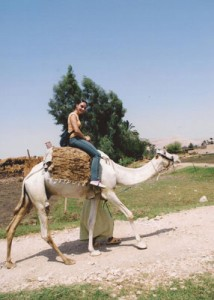 The second (and more sturdy) camel