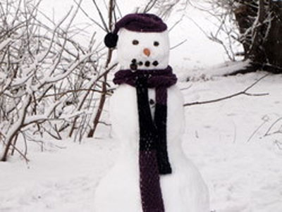 What great snowfall is complete without a snowman? Here is one of many in the park near our apartment in Moscow.