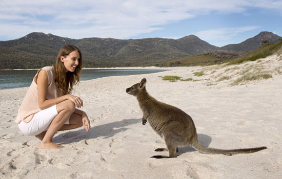 Getting to know some of the locals in Tasmania. Photo by Australia Tourism.