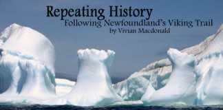 Travel in Newfoundland