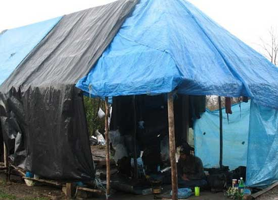 "Base camp - aka ""The Pig Farm."" Photo by Marilynn Windust"