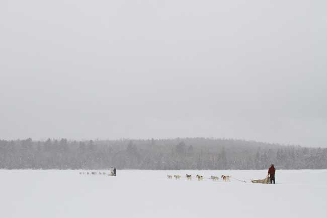 Winter in Maine has its own kind of beauty. Dog sledding in Maine