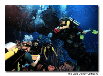 Disney's DiveQuest program takes certified divers on expert-led tours of its 6 million gallon (22 million liter) onsite aquarium.