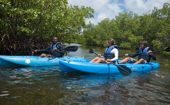 Kayaking in the Ambassadors, Grand Cayman
