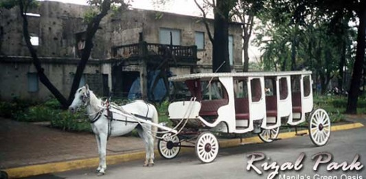 Manila's Rizal Park: A Peaceful Oasis in Downtown Manila