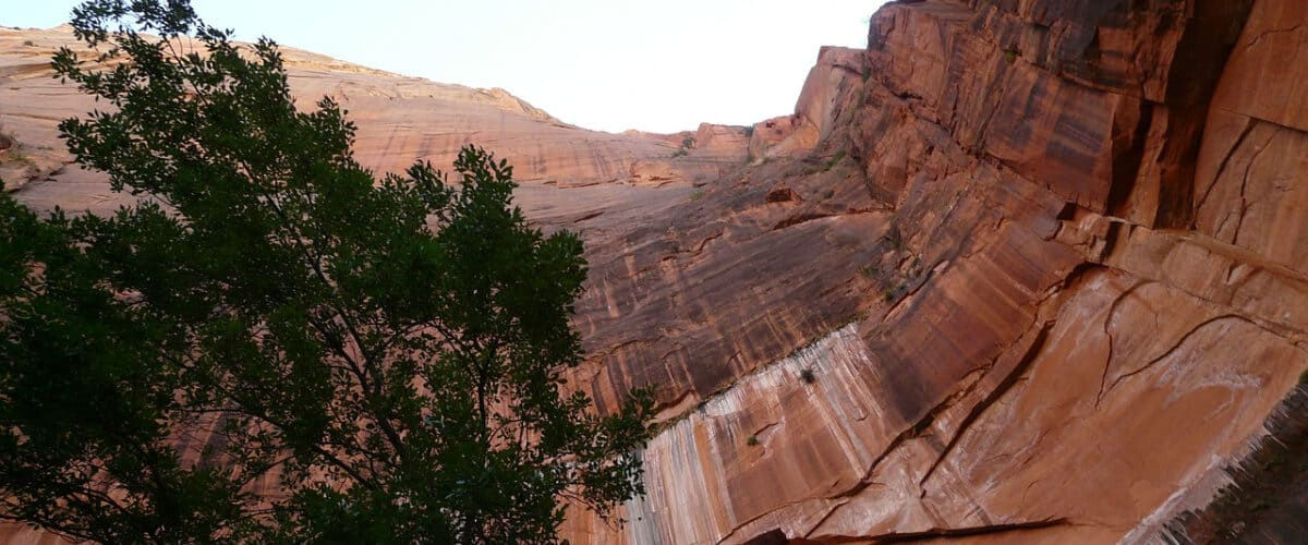 Canyoneering in Zion National Park is an adrenalin rush for those who dare.