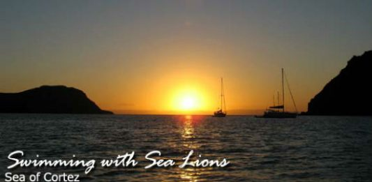 Cruising on the Sea of Cortez with Cortez Cruises