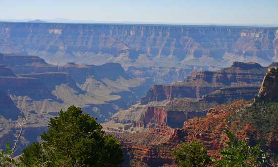 The lesser-known North Rim of the Grand Canyon receives only 320,000 visitors a year.