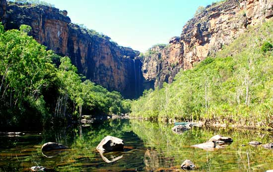 In Kakadu National Park, the forest was dwarfed by the enormity and sheer scale of the canyon. Photo by Angharad Rees
