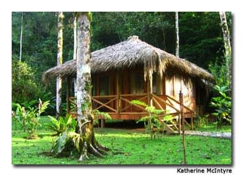 A thatched-roof cabin offers luxury in the jungle.